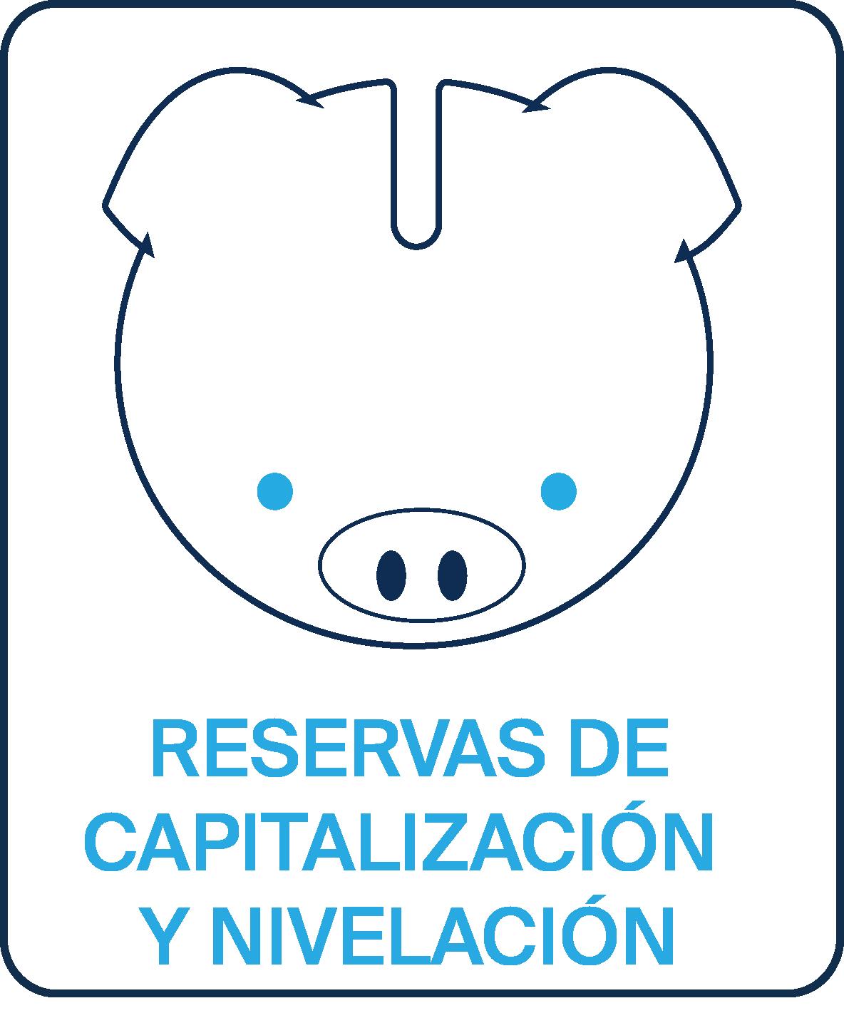 Reservas de capitalización y nivelación